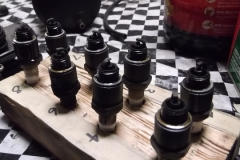 166 plugs removed